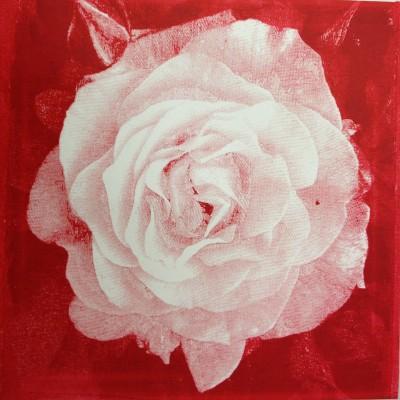 Min røde rose
